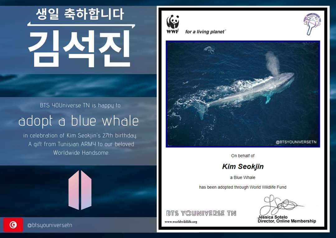 Tunisian Army Celebrate Kim Seokjin Birthday By Adoptation Of A Blue Whale In His Name